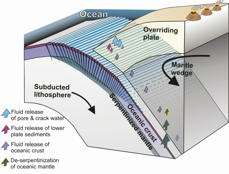 Water pathways at subduction zones: through large cracks formed during the subduction process of the oceanic plates water penetrates, is partly captured and transported in the mantle. There, high pressure and temperatures squeeze it out of the subducting plate and the water ascends back to the surface. graphic: Worzewski