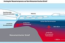 Oceanographic data from Antarctica show that warmer water spills onto the West Antarctic continental shelf, where they warm the shelf. Graphic: S. Schmidtko, ed. C. Kersten, GEOMAR