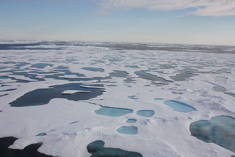 Sea ice in the east Greenland current. Photo: J. Grosse, GEOMAR
